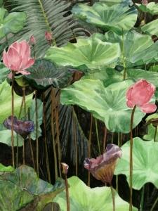 Watercolour-Lotus in Lumpini Park