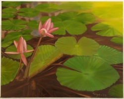 oil-lotus pond